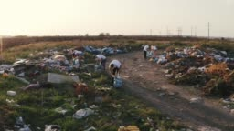 Aerial shot of group of eco volunteers cleaning up area of dump near the field during sunset