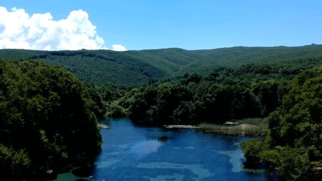 湖と森の空中ショット - 生い茂る点の映像素材/bロール