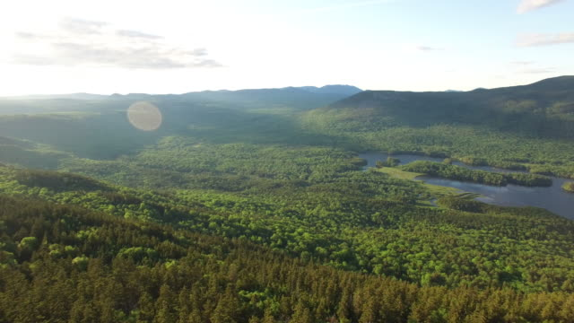 vidéos et rushes de aerial shot of lakes in northern maine. - maine