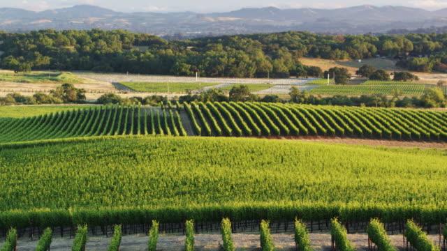 Aerial Shot of Lovely Landscape in Northern California Landscape
