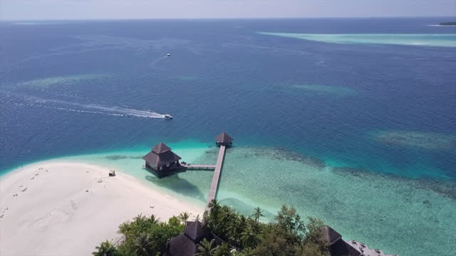 aerial shot of motorboat arriving at resort jetty over blue sea, drone flying forward over trees at beach on sunny day - vaadhoo, maldives - malediven stock-videos und b-roll-filmmaterial