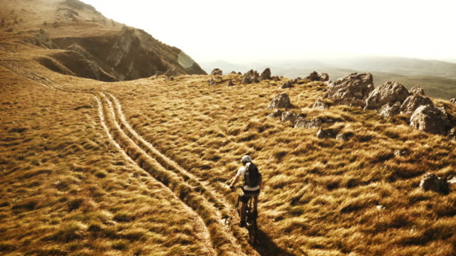 Aerial shot of mountain biker riding the sunny path