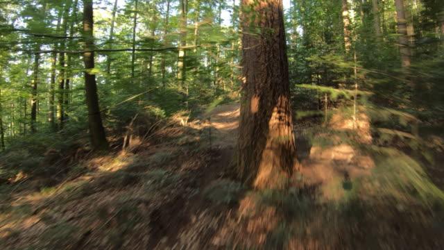 vídeos de stock e filmes b-roll de aerial shot of mountain bikers descending a mountain trail through the forest - área arborizada