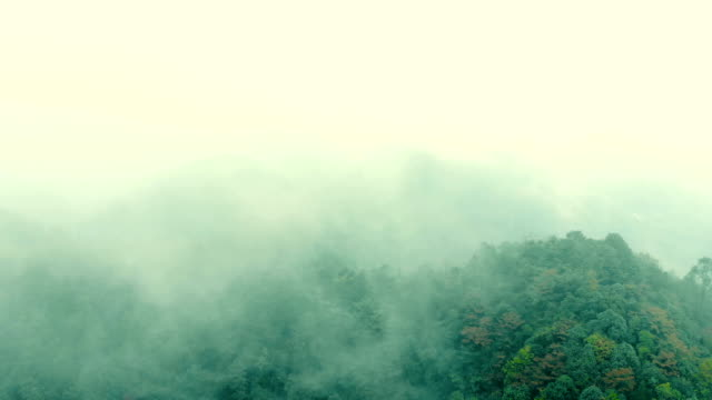 Aerial Shot Of Mountain with fog