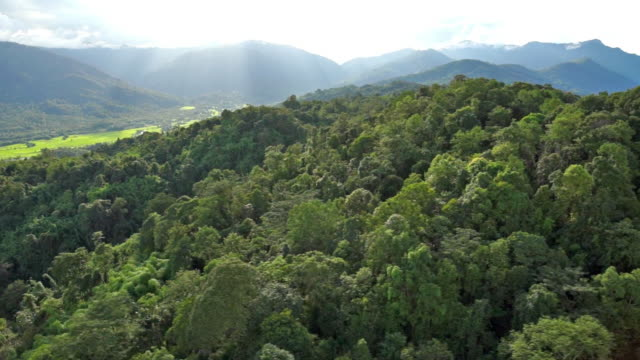 Aerial shot of mountains near Putao, Myanmar
