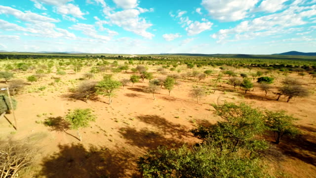 stockvideo's en b-roll-footage met heli aerial shot of namibian savannah - namibië