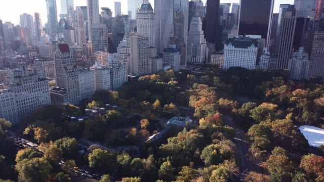 Aerial shot of New York City's Central Park during an Autumn morning.