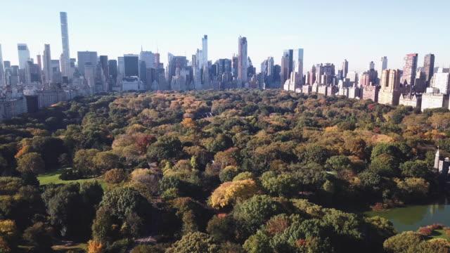 stockvideo's en b-roll-footage met aerial shot of new york city's central park on a crisp autumn morning. - central park manhattan