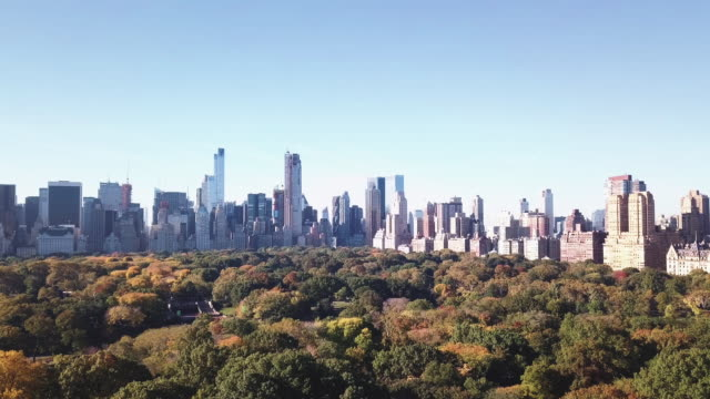 Aerial shot of New York City's Central Park on a crisp Autumn morning.