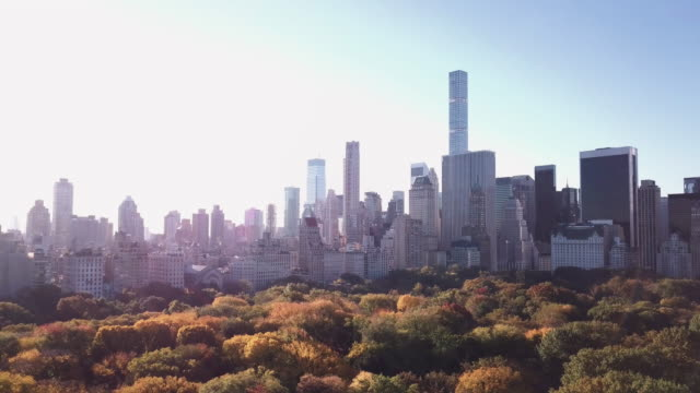 Aerial shot of New York City's Central Park on an Autumn morning.