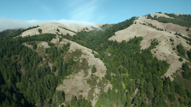 Aerial Shot Of Northern California Wilderness