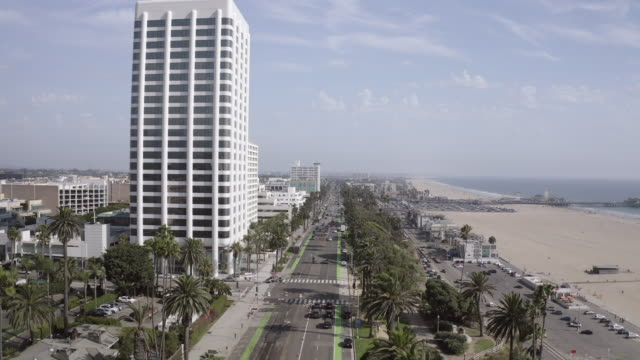 aerial shot of palm trees and street amidst buildings and beach in city, drone flying forward during sunny day - santa monica, california - santa monica street stock videos & royalty-free footage