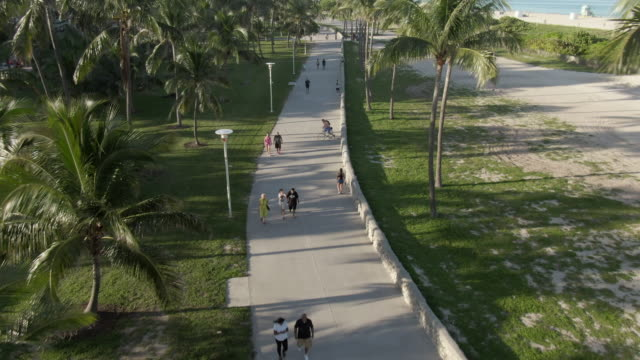 vídeos de stock, filmes e b-roll de aerial shot of people walking on footpath amidst trees at park, drone flying forward near beach on sunny day - miami, florida - parque natural