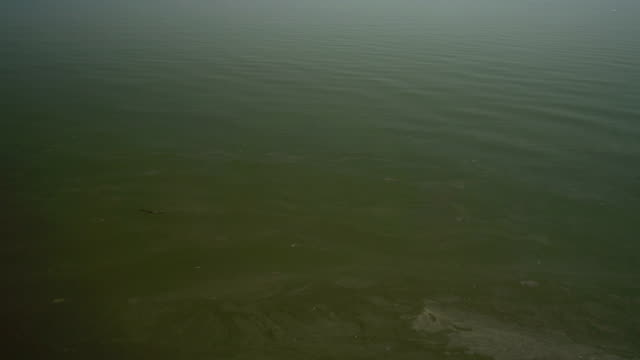 Aerial shot of polluted water