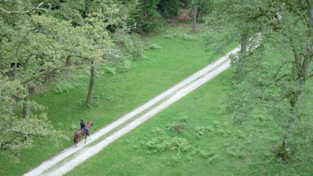 vídeos de stock e filmes b-roll de aerial shot of rider riding a horse through countryside - cavalgar