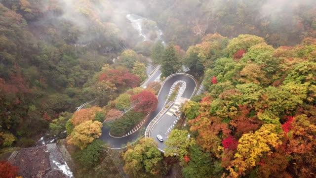 stockvideo's en b-roll-footage met luchtfoto van de weg in het herfst seizoen in nikko, japan - landvoertuig