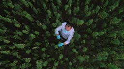 Aerial shot of scientist on marijuana field observing CBD hemp flowers with magnifying glass