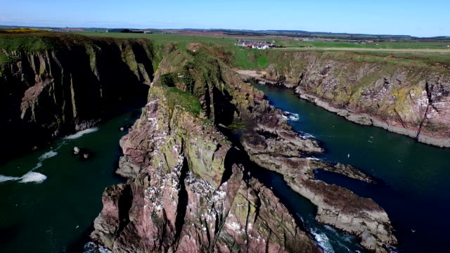 aerial shot of sea cliffs off the coast of scotland near aberdeen - aberdeen scotland stock videos & royalty-free footage