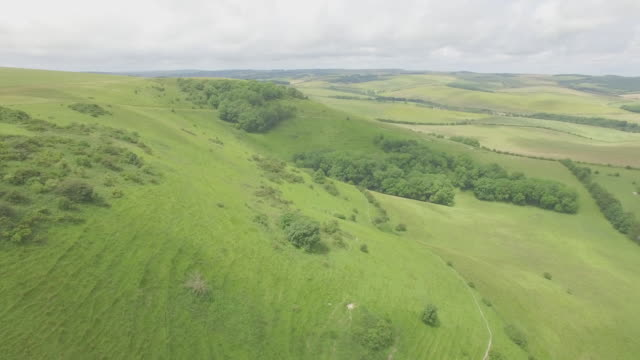 Aerial shot of South Downs