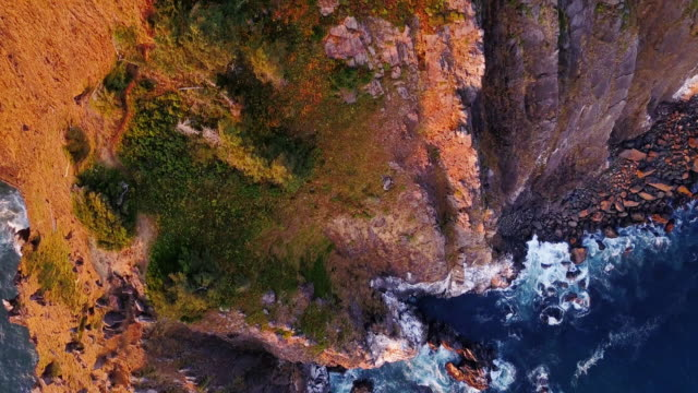 4k aerial shot of spectacular cliffs on northern oregon coast - oregon coast stock videos & royalty-free footage