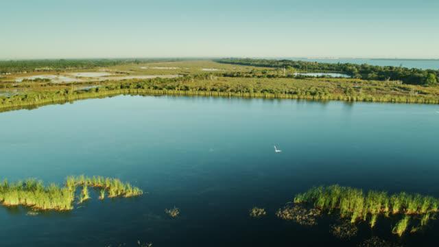 stockvideo's en b-roll-footage met luchtschot van nog water in glade in recreatiegebied van savannes, florida - broek