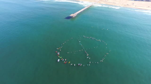vídeos de stock, filmes e b-roll de aerial shot of surfers participating in a paddle out on the ocean. - goodsportvideo