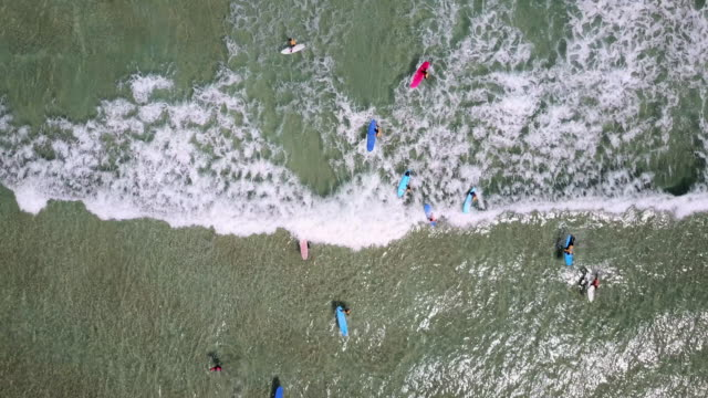 Aerial shot of surfers