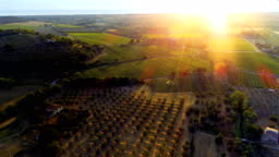 Aerial Shot of the Beautiful Italian Countryside with it's Farms, Vineyards, Olive Trees, Forests, Hills and Fields.
