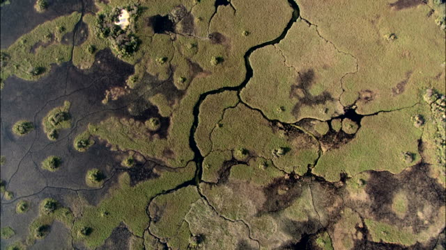 Aerial shot of the deep channels and pools in the Okavango Delta