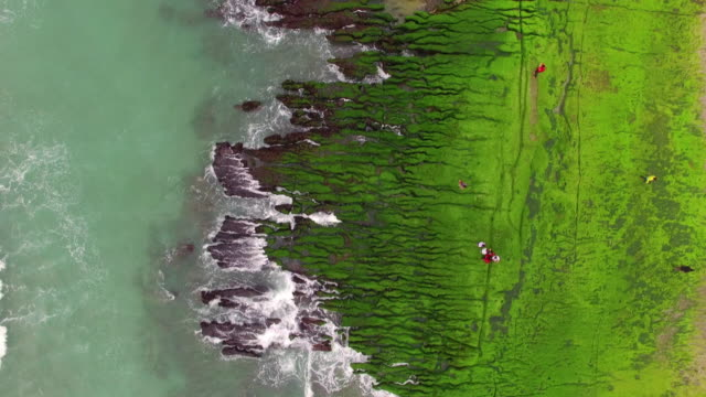 aerial shot of the green reef, taiwan - taiwan stock videos and b-roll footage