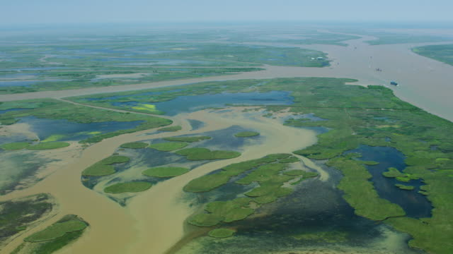 aerial shot of the mississippi river delta - bulrush stock videos & royalty-free footage