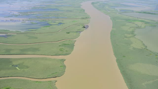 aerial shot of the south pass of the mississippi river - bulrush stock videos & royalty-free footage