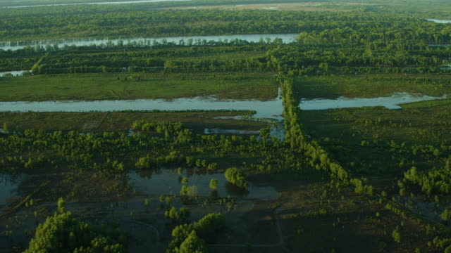 aerial shot of the wetland of the mississippi river near arnot at sunset - sumpf stock-videos und b-roll-filmmaterial