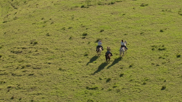 aerial shot of three horseback riders, viewed from the rear. - recreational horse riding stock videos & royalty-free footage