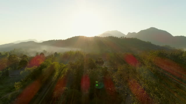 vídeos de stock, filmes e b-roll de aerial shot of trees and mountains against sky during sunrise, drone descending over landscape - tat sae waterfalls, laos - cordilheira