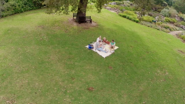 Aerial shot of two couples having a picnic in the Kirstenbosch National Botanical Gardens in Cape Town