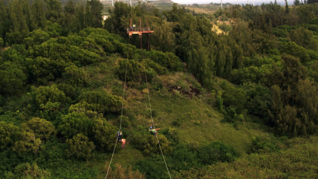 aerial shot of two people on a zipline in the forest - ロープスライダー点の映像素材/bロール