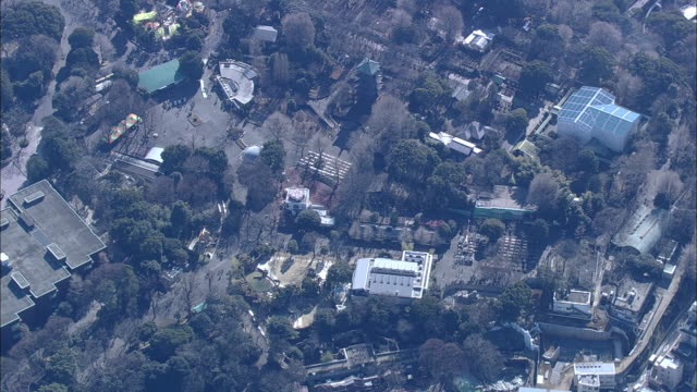Aerial shot of Ueno Zoo and vicinity. Long Shot / In daytime (11:20)