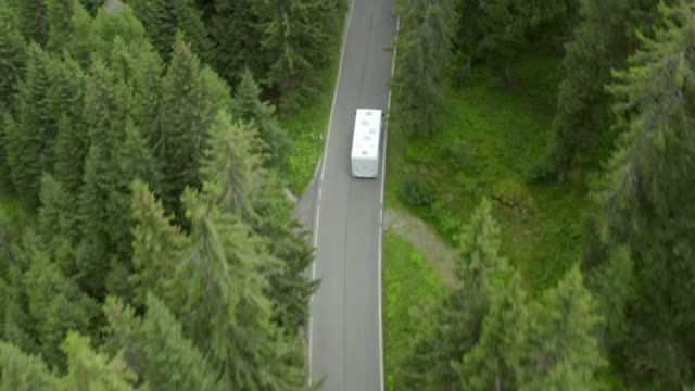 aerial shot of vehicles on highway amidst green trees in forest, drone flying while following bus - dolomites, italy - 枝 植物部分 個影片檔及 b 捲影像