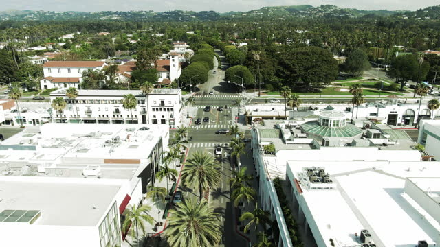 aerial shot of vehicles on rodeo drive with palm trees in city, drone flying forward over street amidst buildings on sunny day - los angeles, california - beverly hills california bildbanksvideor och videomaterial från bakom kulisserna