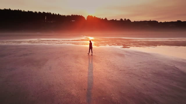 aerial shot of woman walking alone remote beach on washington coast - explorer stock videos & royalty-free footage