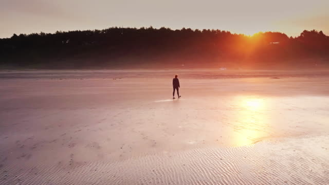 vídeos de stock e filmes b-roll de aerial shot of woman walking on remote beach at sunrise - loneliness