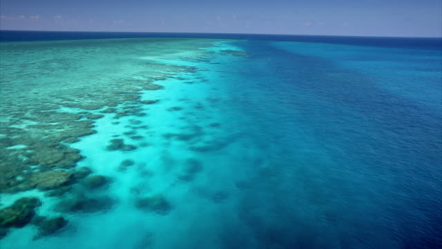 vidéos et rushes de aerial shot over a section of the spectacular great barrier reef. - récif corallien