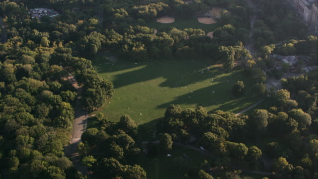 aerial shot over central park with camera tilting down on sheep's meadow, nyc - sheep meadow central park stock videos and b-roll footage