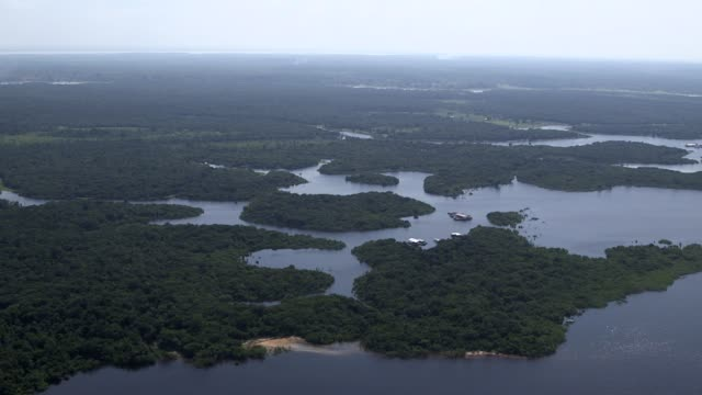 vídeos de stock, filmes e b-roll de aerial shot rainforest surrounding manaus shot on 10th of december 2013 in brazil manaus is the capital city of the northern state of amazonas in... - amazonas state brazil