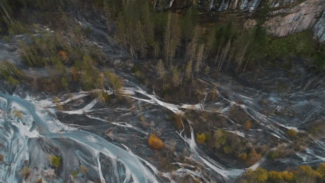 aerial shot showing the edge of a forest and a braided river, switzerland - natürliches muster stock-videos und b-roll-filmmaterial
