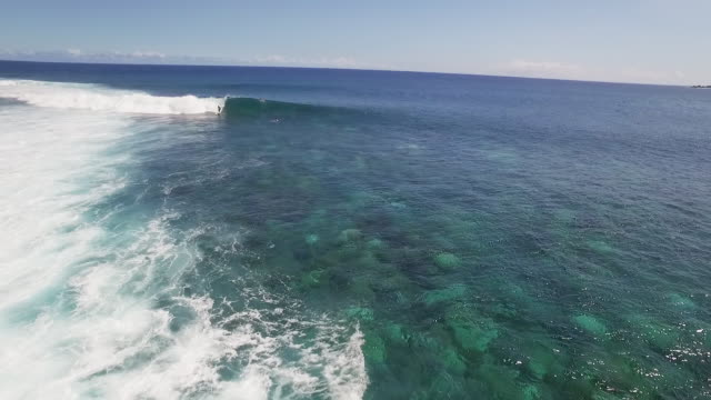 aerial shot, surfer rides wave off of reunion island - réunion french overseas territory stock videos & royalty-free footage