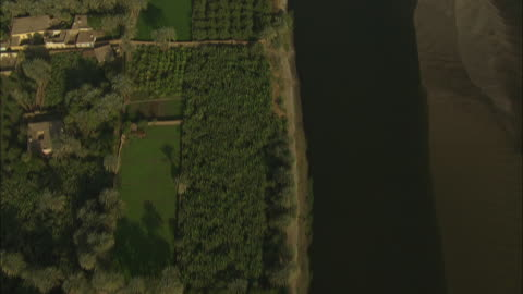 aerial shot tracking along the banks of the nile river in egypt - egypt stock videos & royalty-free footage