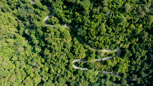 aerial shot vehicles driving on a winding mountain road. - chiang mai province stock videos & royalty-free footage