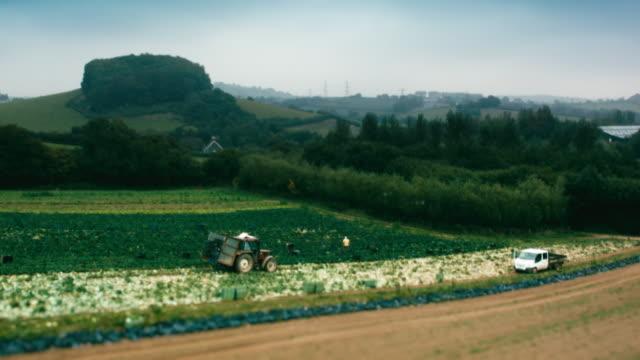 aerial shots farmland - devon stock videos & royalty-free footage